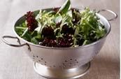 lettucebowl.jpg