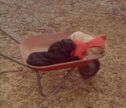 tn02sleepwheelbarrow.jpg