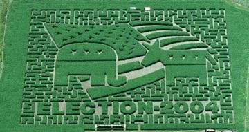 votecornfield.jpg