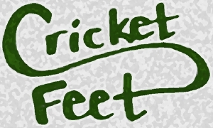 cricketfeet.jpg